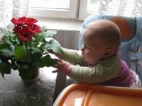 Ирина Пашкова, 19 августа , Нижний Новгород, id29470003