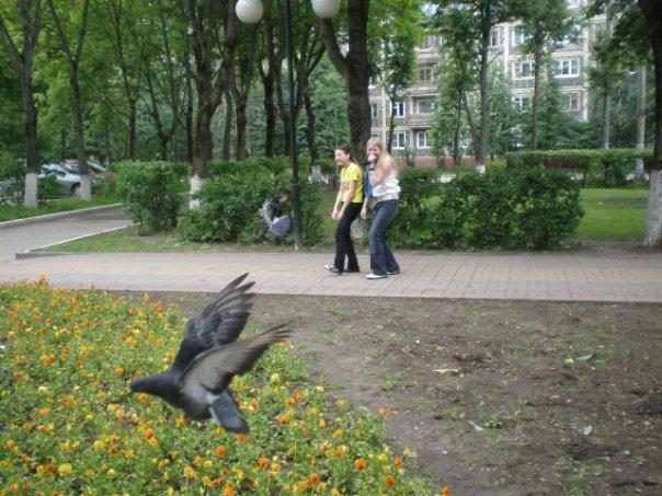 http://cs10308.vkontakte.ru/u73594053/112247923/x_f66f65c1.jpg