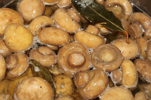 Грибы по венесуэльски рецепт с фото