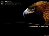 Магомед Махлоев, Белово, id77897457