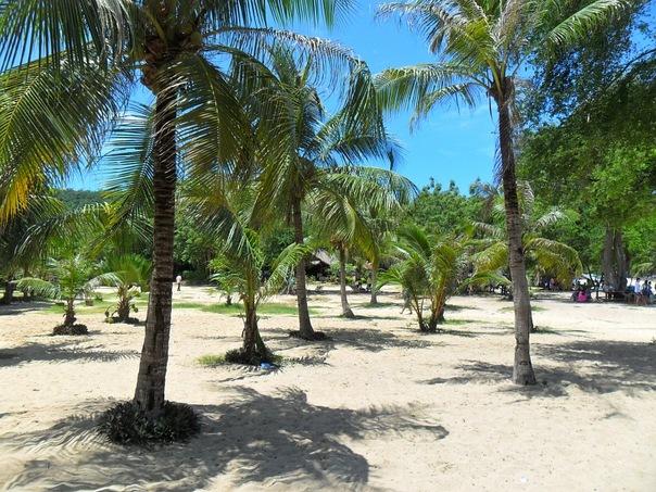 На живописном пляже Плайя-Бланка в Панаме.