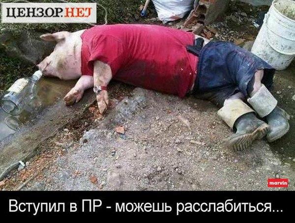 """""""Титушки"""" заблокировали представительство ЕС в Киеве, - журналист - Цензор.НЕТ 8319"""
