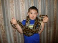 Адилет Сулайманов, 30 декабря , Нягань, id100120392