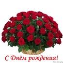 Фото: Купить розы.