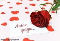Фарида Гайнанова, Мамадыш, id110119890