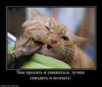 Олег Супер, 12 сентября 1991, Санкт-Петербург, id50542148