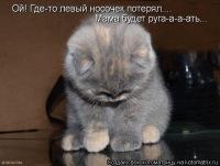Ольга Обухова, 29 декабря , Донецк, id159302019