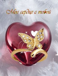 Amina Zamtieva, 4 января , Санкт-Петербург, id171269545