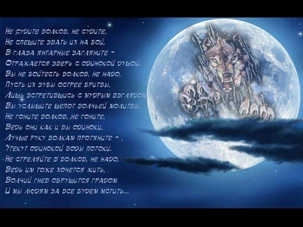 Стихи и песни про волков в картинках X_89ed3a7e