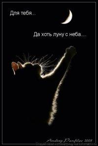 Honeyed Ganza, 19 июня , Москва, id64776958