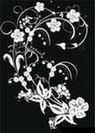 Черный & белый цветок украшения. черный,белый,цветок,украшения.