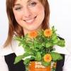 Happy Plant - креативный и оригинальный подарок.