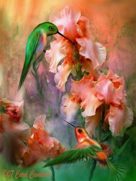 Картинная галерея (художники) - Страница 2 X_ae756b4c