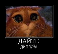 Диплом отчет по практике курсовая контрольная ВКонтакте Диплом отчет по практике курсовая контрольная