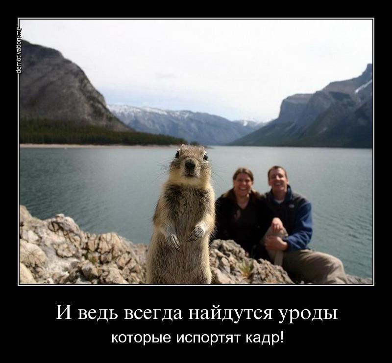 Мир был цвета страсти сериал на русском каждый может