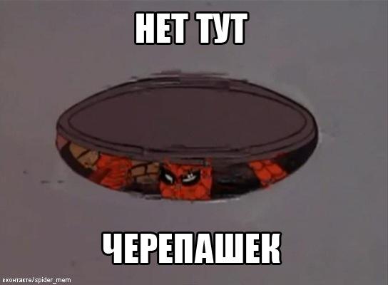 http://cs10392.vkontakte.ru/u675869/128513907/x_785e7478.jpg