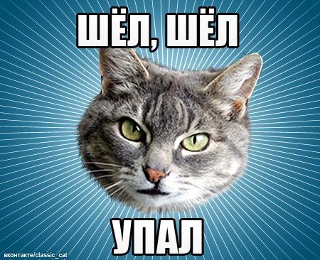 https://cs10392.vkontakte.ru/u675869/140082175/x_c62caa55.jpg