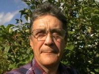 Mihail Nyberg, 6 июня 1989, Санкт-Петербург, id161392629
