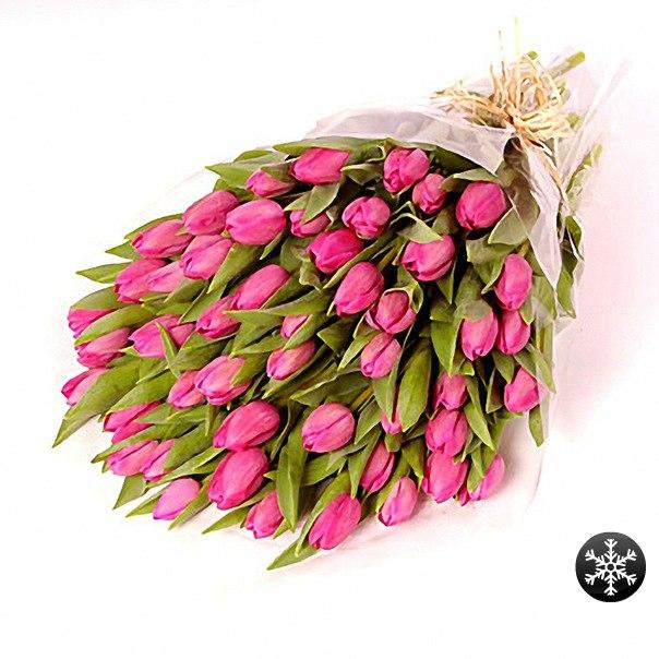 http://cs10404.vkontakte.ru/u105552812/-5/x_ac8cb123.jpg