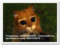 Олександр Гелунец, 21 ноября , Винница, id111650635