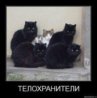 Fefef Erfef, Кривой Рог, id73480827