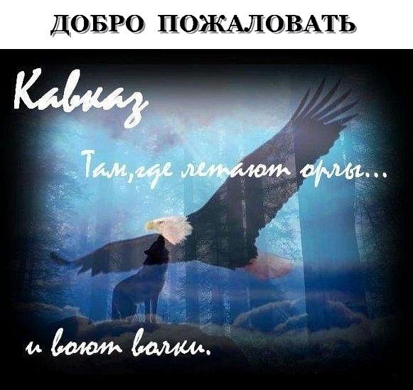 Диаспора народов кавказа