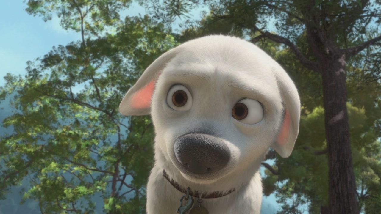 Мультфильм про собаку
