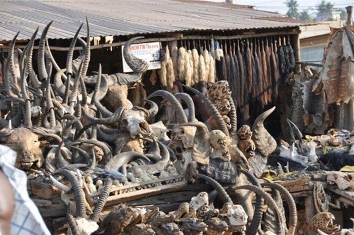 Супермаркет Вуду в Того