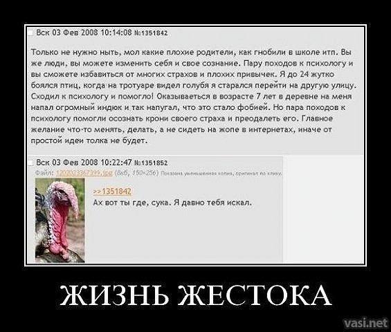 http://cs10419.vkontakte.ru/u46806398/123895890/x_52daca13.jpg