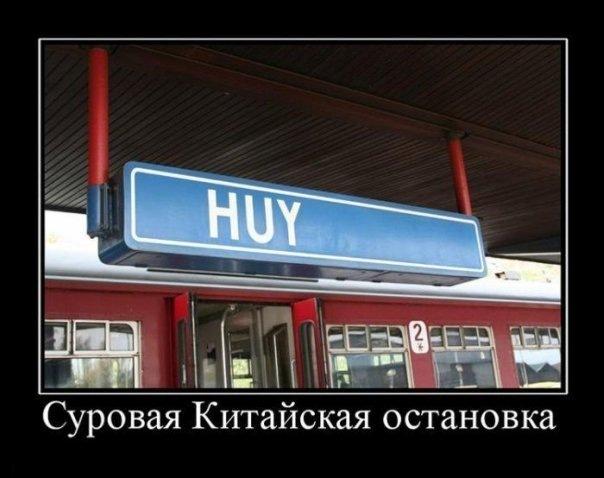 http://cs10419.vkontakte.ru/u46806398/123895890/x_eb6c73c5.jpg