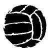 Весь волейбол