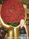 Анастасия Якубович, 15 июля 1994, Екатеринбург, id64650469