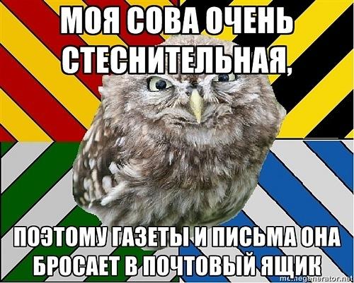 https://cs10427.vkontakte.ru/u85157811/140828935/x_788d5b3f.jpg