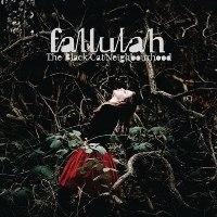 Fallulah - The Black Cat Neighbourhood (2010) / indie, indie pop, danish, alternative, indietronica