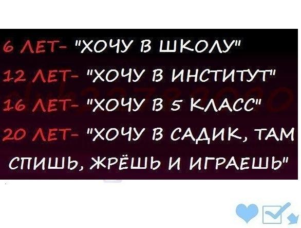 Смешные фразочки)))) X_f227a6e6