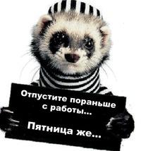 Александр Живодеров, Красноярск, id6869247