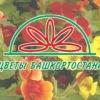 Цветы Башкортостана