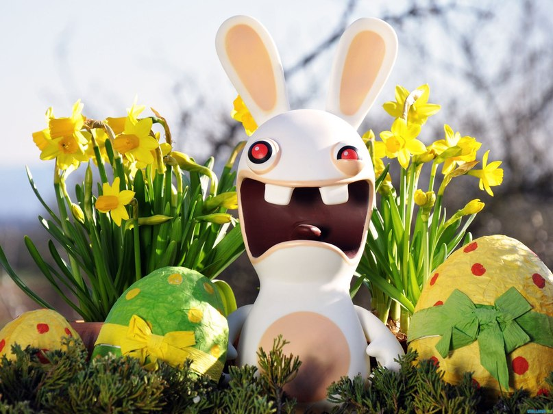 30 Easter Bunny Wallpapers Backgrounds Images