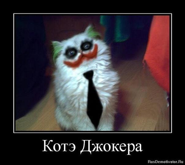 http://cs10480.vkontakte.ru/u45751467/-14/x_36aad4cf.jpg