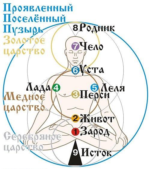http://cs10485.vkontakte.ru/u48877108/122193023/x_60f40e55.jpg
