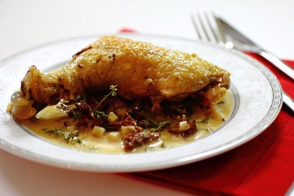 Курица с сушеными грибами в сметанном соусе рецепт