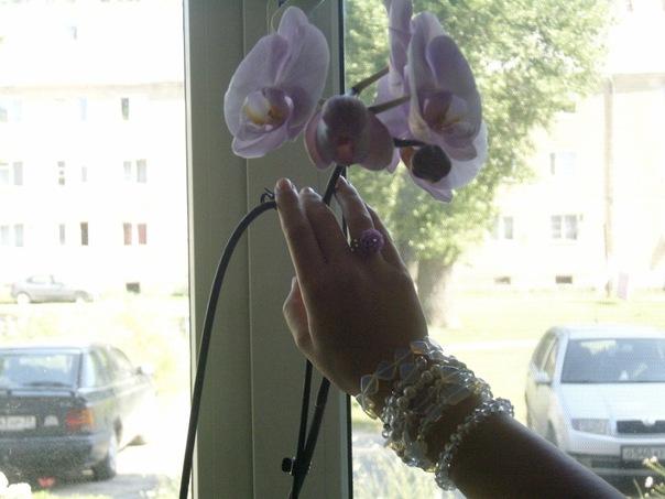 http://cs10490.vkontakte.ru/u72562883/140073948/x_dcdfcf80.jpg