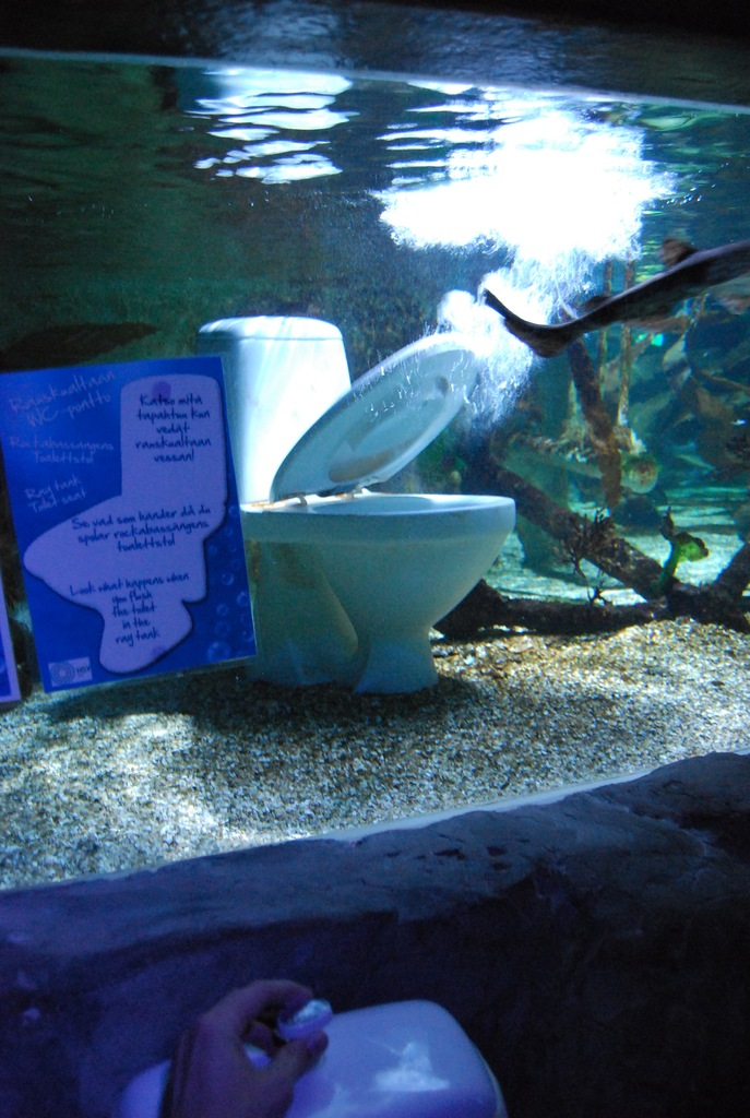 подводный туалет