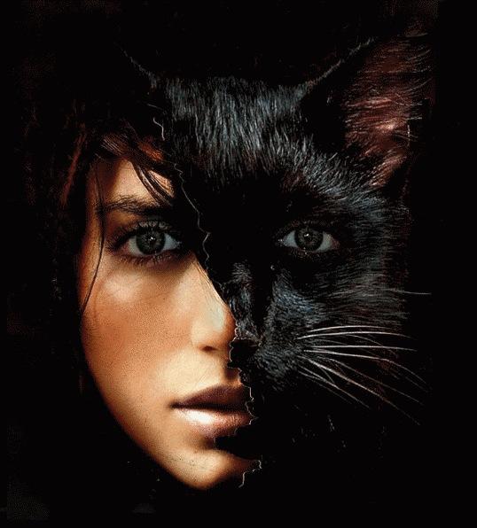 ...ru/chunk45/2237139/2028/Блестяшка-анимация, Девушка-кошка.gif.