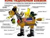 Конь Педальный, 16 апреля 1997, Ставрополь, id179982667