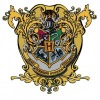 Школа чародейства и волшебства Хогвартс Тонкс