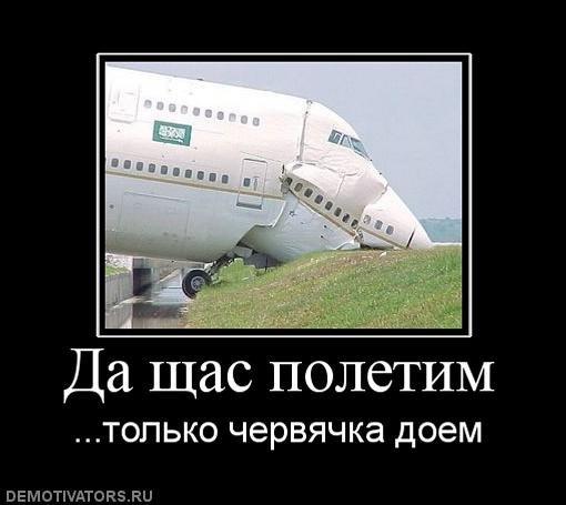 x_86d9bd59.jpg