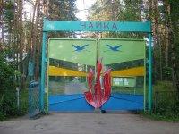 лагеря фото чайка