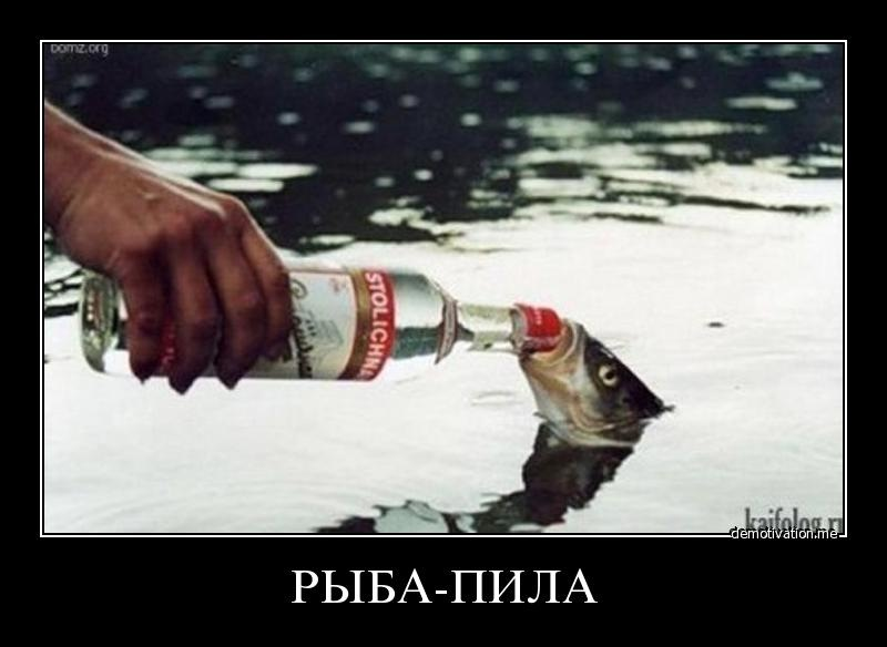 Пьют пускают в попу рыьок 12 фотография