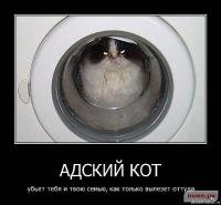 Сергей Касаткин, 22 января 1988, Харьков, id128986703